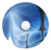 mugiro - Nipple protector